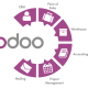 odoo-implementation odoo-supplychain odoo-integration
