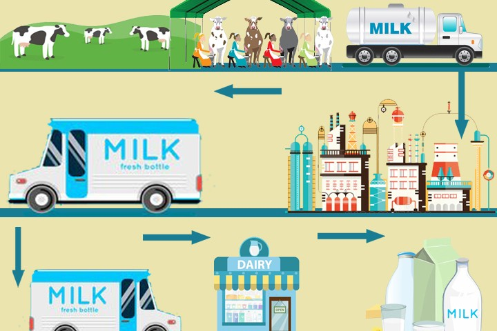 Iot Internet of things in dairy supply chain poc in india