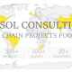 hesol consulting, supply chain consulting, consultant scm, logistics consultant, fmcg consultatn, automotive consultant
